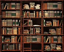 image of a bookshelf filled with books